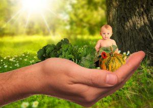 Anak, Bayi, Sayur Sayuran, Buah, Sehat, Alam, Gizi