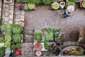 Pasar, Sayur Sayuran, Taman, Asia, Jepang