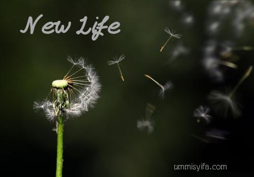 New normal, tatanan kehidupan baru