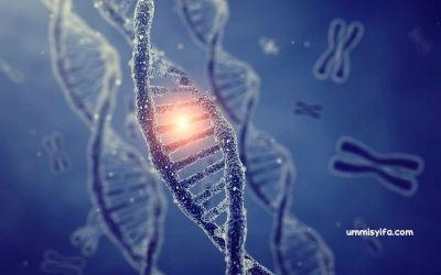 Varian Mutasi Virus Covid-19